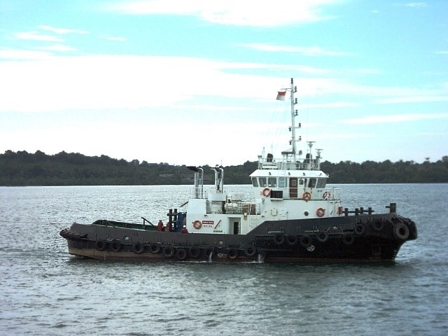 29.5M Tug Boat For Sale or Charter